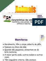 Caracteristicas Dos Animais