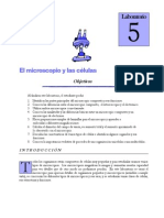 lab microscopio.pdf