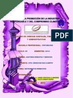 AUDITORIA_OPERATIVA_MARIO_JULCA_EXPOSICION.pdf