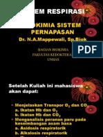 Sistem Respirasi biokimia