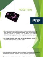 Microbiologia (rickettsias)
