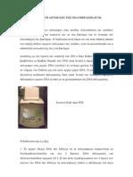 PCR-primers