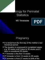 Terminology for Perinatal Statistics