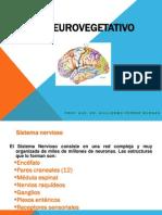 2 Sistema Neurovegetativo