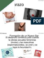 El embarazo.pptx