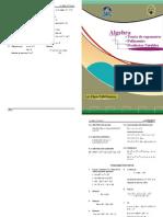 algebraico 1.pdf