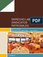 Derecho Laboral Sindicatos Patronales