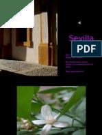Sevilla Para Ti