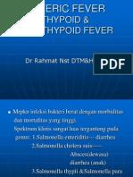 Demam Thypoid