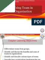 Using Team in Organization