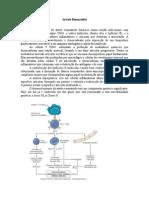Artrite+Reumatóide