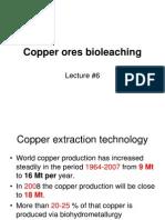 6 Copper Ores Bioleaching