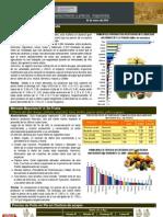 Precios Del 04 de ENERO DEL 2010