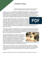 Prohibidos Show De Zoofilia En Xalapa