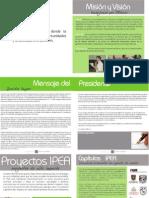 IPEA Informe Anual 2009