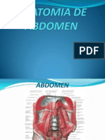 Anatomia de Abd