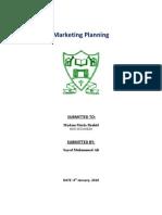 Marketing Planning (Hico IceCream)