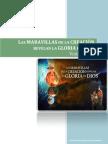 transcripción del vídeo Las Maravillas de la Creación Revelan la Gloria de Dios