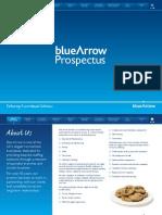 Blue Arrows Prospectus