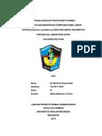 Laporan Lengkap Praktikum Fitokimia i