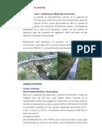 Diagnostico_actual_canales_reservorios_obras_arte.docx