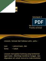 KLP 2 Ppt Lisosom