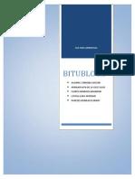 INFORME - BITUBLOCK