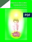 Protocolo de Cura Homeostatica por Cristian Corrial