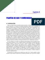 Plantas de Gas