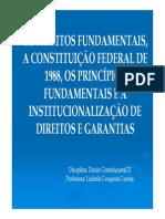 Inconstitucionalização Dos Direitos