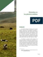 Lectura Disturbios.pdf