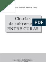 CHARLAS DE SOBREMESA ENTRE CURAS