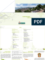 perfil municipal de valle de bravo