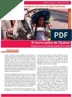El Burro-cebra de Tijuana. Testigo Mudo de La Evolución Creativa de La Ciudad