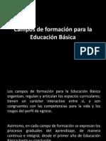 Campos de Formaci n Para La Educaci n B Sica