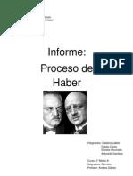 Proceso de Haber (1)