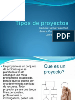 Tipos de Proyectos