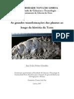 mendao_2007 (2).pdf