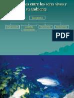 Ecosistemas Interaccion Entre Biotopos y Biocenosis