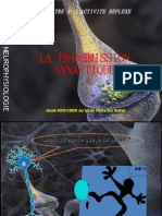 intégration post-synaptique