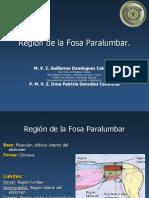 Región de La Fosa Paralumbar