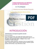 Introduccion de Gestion