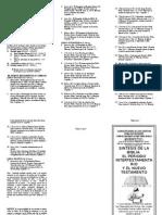 Sintesis de La Biblia El Nuevo Testamento Triptico Calspecet