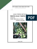 Giáo trình mô đun - Trồng rau nhóm ăn quả - Bộ NN&PTNT