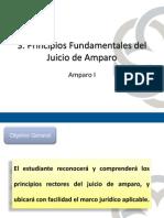 U3 amparo.pdf