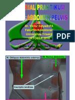PDF Tutorial Praktikum Model Sistem Digestivus 10-2010