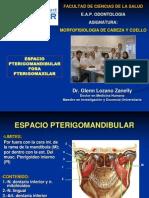 FOSA_PTERIGOMAXILAR_UNW_14-II.ppt