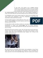 Proses Pembuatan Es Kering
