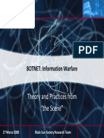 Botnet and Informational Warfare Print Final