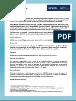 Chikungunya Argentina 11-07-2014
